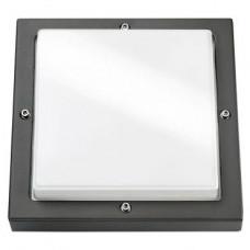 Bassi graphite/opale E27 CFL