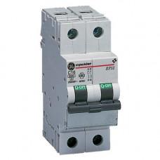 EP30 disjoncteur 3kA 2P 16A C   667025 VYNEP32C16