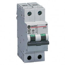 EP30 disjoncteur 3kA 2P C   667026 VYNEP32C20
