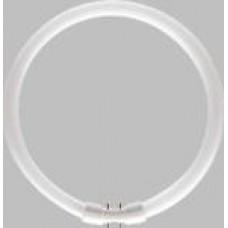 MASTER TL5 Circular 40W/8  64275225