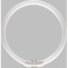 MASTER TL5 Circular 60W/8  64259225